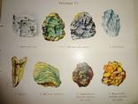 1912 Царство Камней Атлас 96 раскрашенных фигур