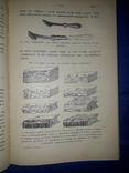 1914 Картонажные и переплетные работы