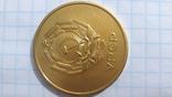 Золотая школьная медаль УССР образца 1954 года photo 7