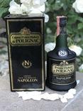 Napoleon Polignac 1970