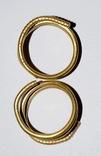 Комплекс украшений скифов 7-6 век до н.э photo 9
