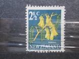 Новая Зеландия флора, фото №2