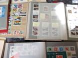 Марки почтовые в альбомах больше 2000 штук, фото №4