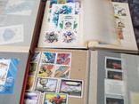 Марки почтовые в альбомах больше 2000 штук, фото №7