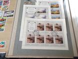 Марки почтовые в альбомах больше 2000 штук, фото №8