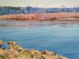 """"""" Река Случь. Осень"""". 2010 г. С. Берестов. photo 7"""