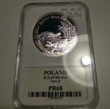 Польша 20 злотых 2002 Черепахи, слаб ECC