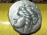статер монета ольвии (серебро) photo 1