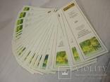 Новые книжные закладки 50 шт, фото №2