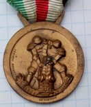 Медаль італійсько-німецька кампанія в Африці photo 6