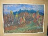 Закарпатський художник Сєроухов Лісний пейзаж Картон Олівець