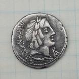 Марк Фонтей, Рим, республиканский динарий