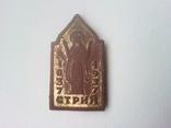 Значок Стрий 1037-1937