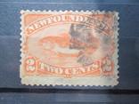 Ньюфаундленд 1887 фауна гаш, фото №2