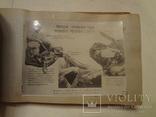 1935 Кулинария Альбом Соцреализм Наркомвнуторг, фото №7