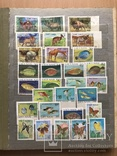 Альбом марок животные 809 шт photo 1