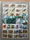 Альбом марок животные 809 шт photo 5