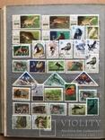 Альбом марок животные 809 шт photo 8