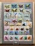 Альбом марок животные 809 шт photo 9