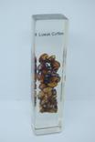 Сувенир Кофе Лувак Luwak Coffee. Самое дорогое кофе. 115мм, фото №2