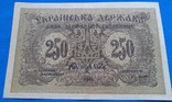 250 карбованцев Украины 1918 года ( серия АА )