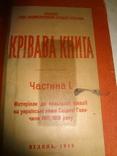 1919 Крівава Книга українсько - польских відносин Уряд ЗУНР