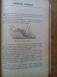 Книга о вкусной и здоровой пище 1951г., фото №5