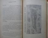 Книга о вкусной и здоровой пище 1951г., фото №6
