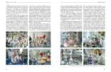 """Альбом-каталог """"Валентина и Николай Трегубовы"""" Фарфор Коростень, фото №9"""