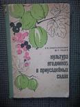 Культура ягодников в приусадебных садах.1966 год., фото №2