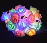 Гирлянда Розы на батарейках. 5 метров. Разноцветная. Светодиодная переносная. Автономная