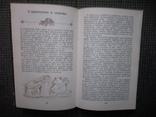 Популярная диетология.1989 год., фото №6