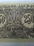 250 карбованців 1918 серія АА Українська держава photo 4