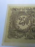 250 карбованців 1918 серія АА Українська держава photo 5