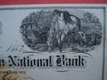 США чек 1882 год на 278,00$ конь photo 1