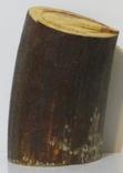 Бивень мамонта ( фрагмент) photo 2