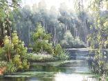 Пейзаж. . Олія,полотно 40х60 см підпис автора. photo 3