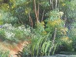Пейзаж. . Олія,полотно 40х60 см підпис автора. photo 6