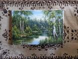 Пейзаж. . Олія,полотно 40х60 см підпис автора. photo 8