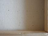 Пейзаж. . Олія,полотно 40х60 см підпис автора. photo 9