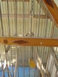 Клетка для птиц. photo 8