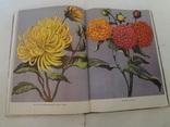 1963 Каталог Квітів України 2000 наклад