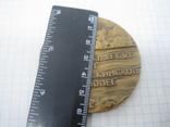 Медаль 1934-1984 50 лет Челюскинской эпопее. Челюскин. Томпак. 60мм, фото №6