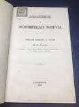 Финансовые и экономические вопросы. В.А. Панаев. СПБ 1878. фото 3