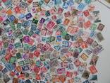 Приличный лот иностранных марок 470 шт.с блоком птицы. photo 5