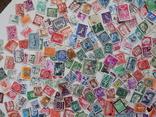 Приличный лот иностранных марок 470 шт.с блоком птицы. photo 10