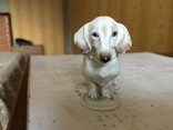 Фигурка собаки DACHSHUND ROSENTHAL BAVARIA