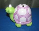 Черепаха, фото №3