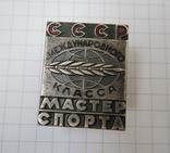 Мастер спорта СССР международного класса.