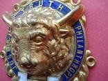 Масонская нашивка Ордена Буйволов №2319